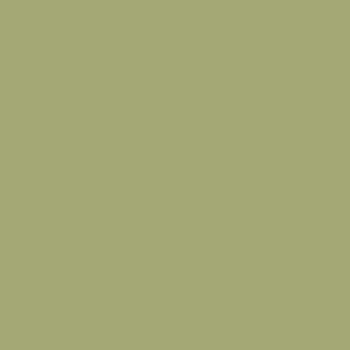 carre-olive-KS-06-M-1